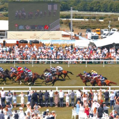 horses racing at royal ascot