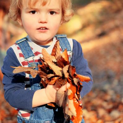 little boy holding autumn leaves photoshoot lickey hills birmingham