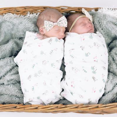 newborn twin girls photoshoot in a basket