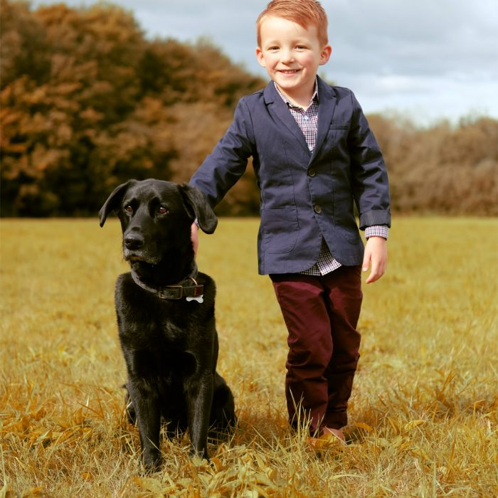 smart little boy in morton stanley park redditch with his back labrador in the park