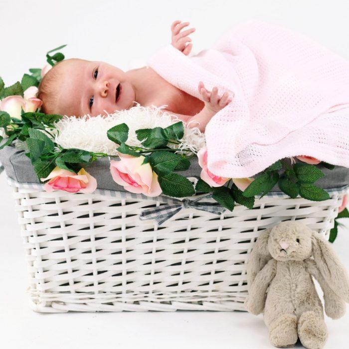 newborn girl studio photoshoot in basket worcestershire